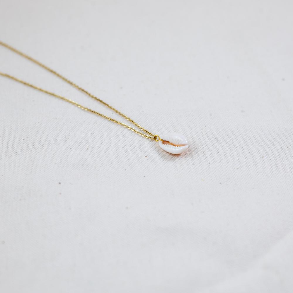 collier acier inoxydable en forme de coquillage pendu a une chaine doré sur fond blanc